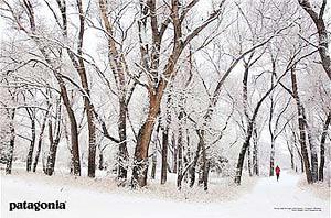 『Snowy Solitude, Livingston MT/Tony Demin』パタゴニア(patagonia) | ポスター通販のアズポスター